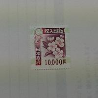 ファイル 1123-1.jpg